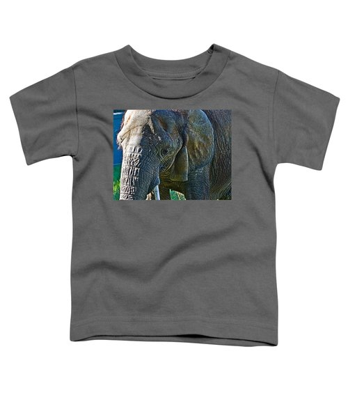 Cuddles In Search Toddler T-Shirt by Miroslava Jurcik