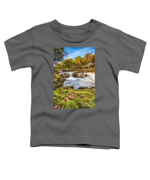 Cyfyng Falls Toddler T-Shirt