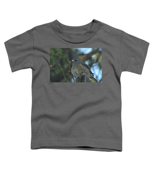 Dark-eyed Junco Toddler T-Shirt