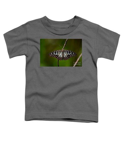 Dark Glassy Tiger Butterfly On Branch Toddler T-Shirt