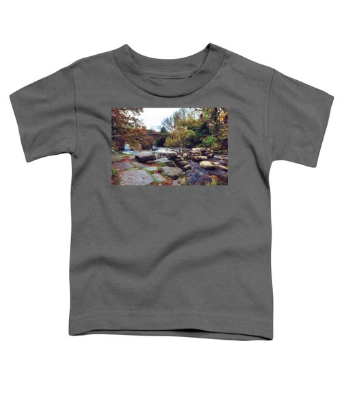 Dartmeet Toddler T-Shirt