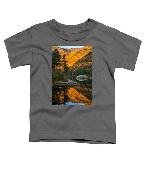 Dawns Foliage Reflection Toddler T-Shirt