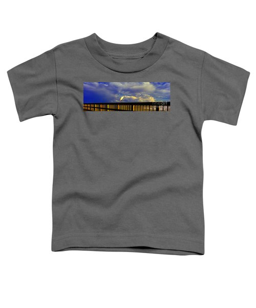 Daytona Beach Rail Bird Sun Glow Pier  Toddler T-Shirt
