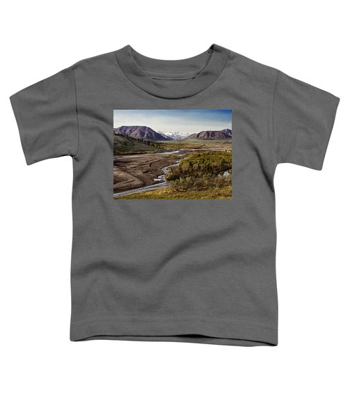 Denali Toklat River Toddler T-Shirt