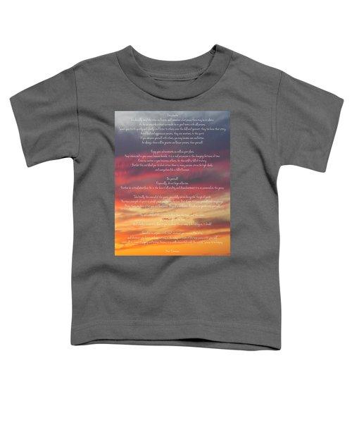 Desiderata Sky 2 Toddler T-Shirt