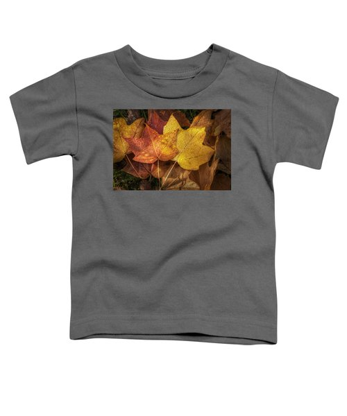 Dew On Autumn Leaves Toddler T-Shirt