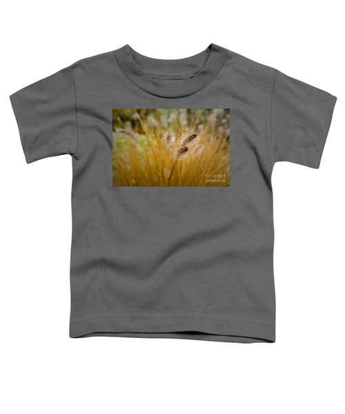 Dew On Ornamental Grass No. 4 Toddler T-Shirt