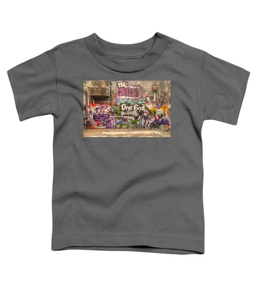 Disorderly Conduct Toddler T-Shirt