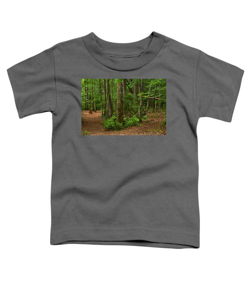 Diverted Paths Toddler T-Shirt