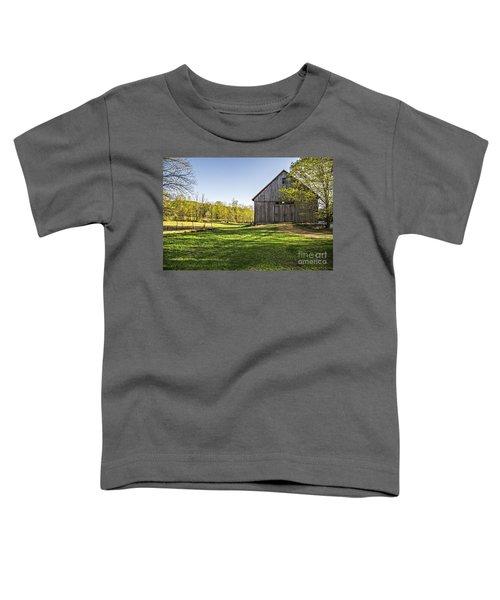 Downtown Metropolitan Etna Nh Toddler T-Shirt