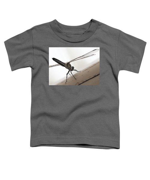 Dragon Of The Air  Toddler T-Shirt