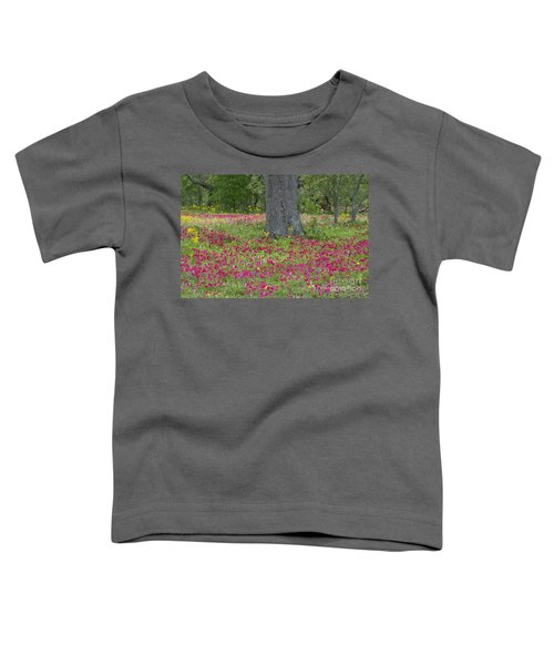 Drummonds Phlox And Crown Tickweed Central Texas Toddler T-Shirt