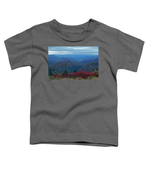 Dusk In Pastels Toddler T-Shirt