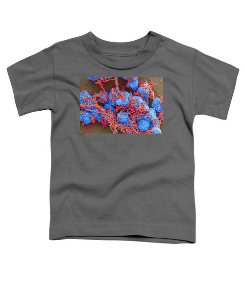 E Coli And Macrophages Sem Toddler T-Shirt