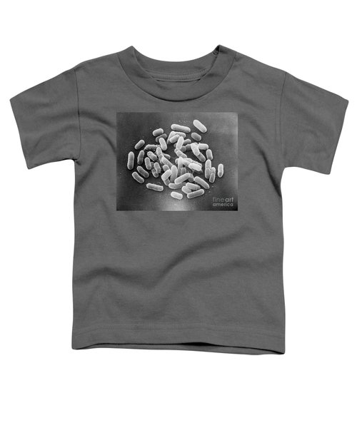 E. Coli Bacteria Sem X22,000 Toddler T-Shirt