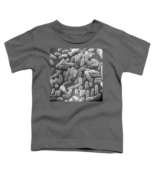 E. Coli Bacteria Sem X25,000 Toddler T-Shirt