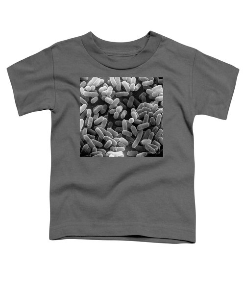 E. Coli Bacteria Sem X27,000 Toddler T-Shirt