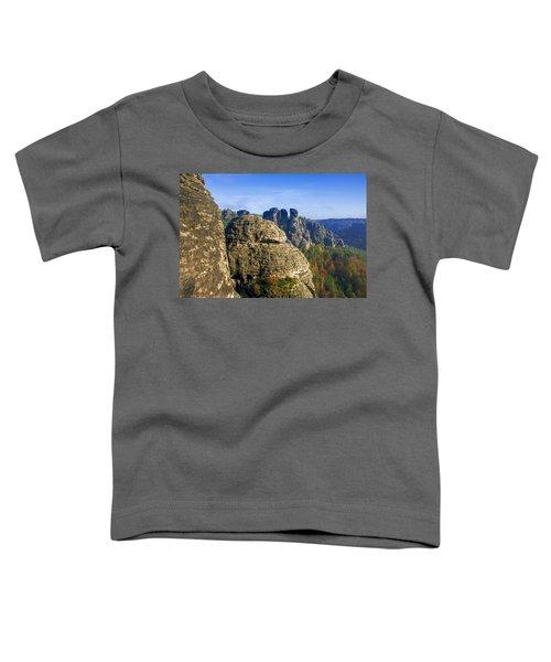 Early Morning On Neurathen Castle Toddler T-Shirt