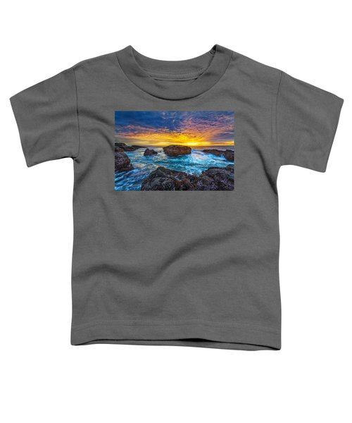 Edge Of North America Toddler T-Shirt