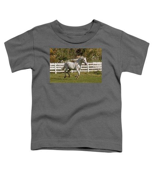 Effortless Gait Toddler T-Shirt
