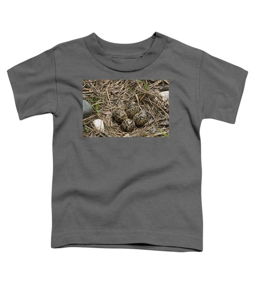 Eggs In Killdeer Nest Toddler T-Shirt