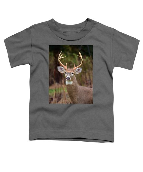 Eight Points Of Awesome Toddler T-Shirt