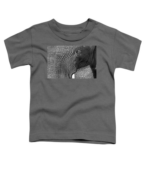 Elephant.. Dont Cry Toddler T-Shirt