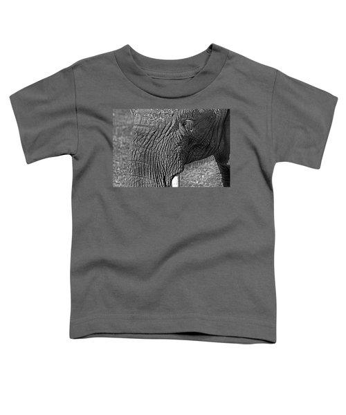Elephant.. Dont Cry Toddler T-Shirt by Miroslava Jurcik