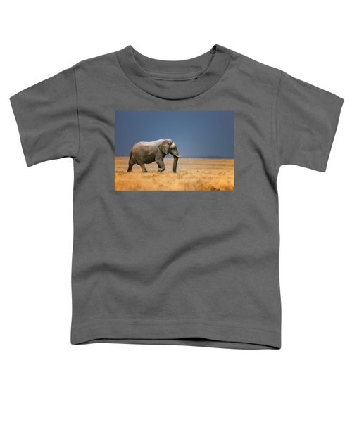Elephant In Grassfield Toddler T-Shirt