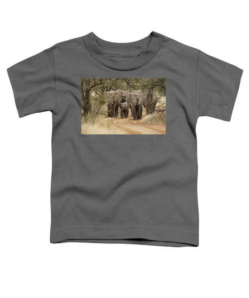 Elephants Have The Right Of Way Toddler T-Shirt