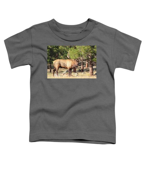 Evening Roundup Toddler T-Shirt