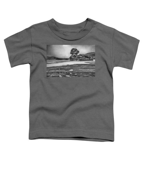 Exposed To Wind And Weather Toddler T-Shirt