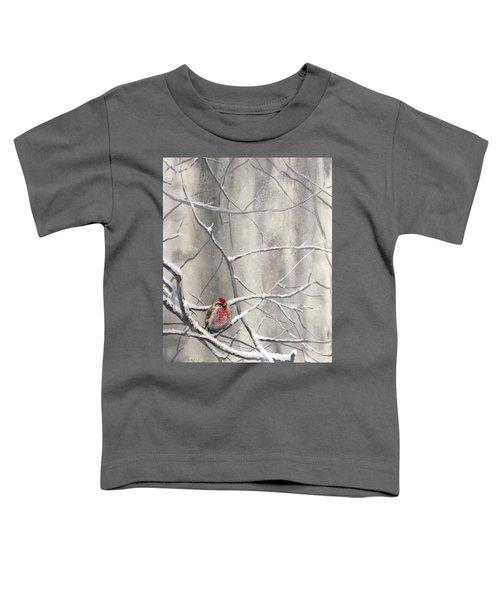 Eyeing The Feeder Alaskan Redpoll In Winter Toddler T-Shirt