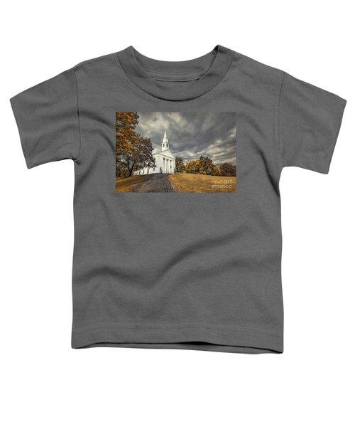 Faith Embrace Toddler T-Shirt