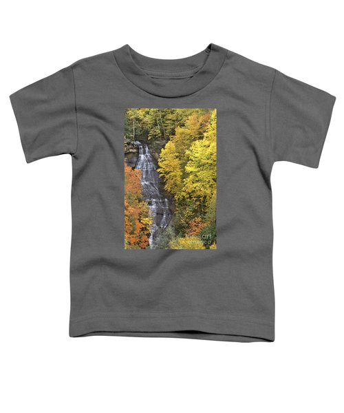 Fall Color Surrounds Chapel Falls On The Michigan Upper Peninsula Toddler T-Shirt