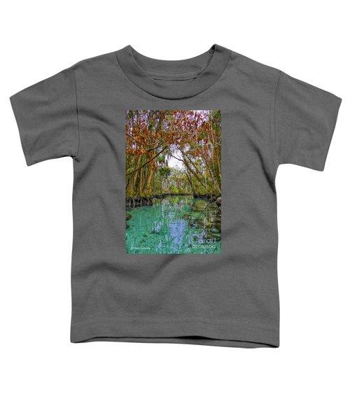 Fall Colors Along Three Sisters Spring Run Toddler T-Shirt