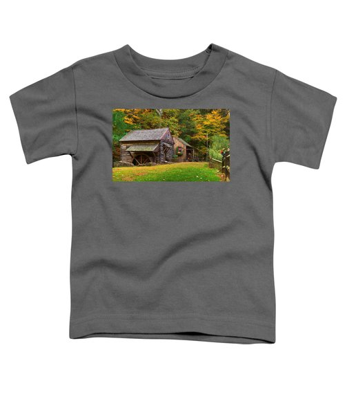 Fall Down On The Farm Toddler T-Shirt