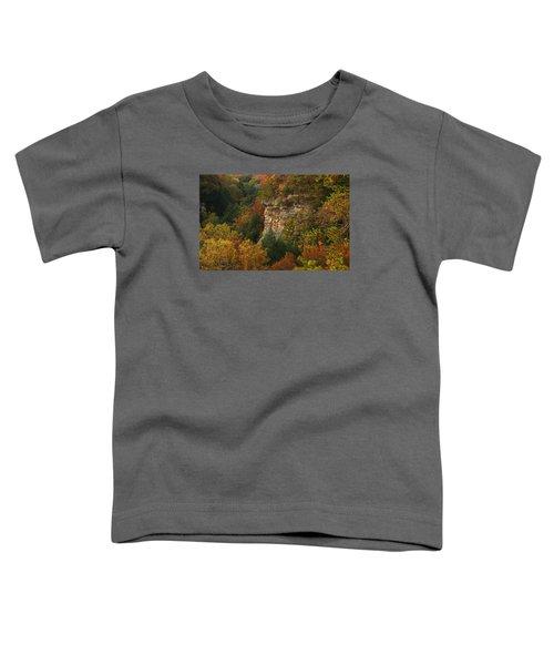 Fall Light Toddler T-Shirt