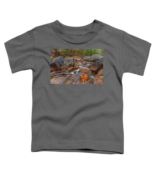 Fall On The Rocks Toddler T-Shirt