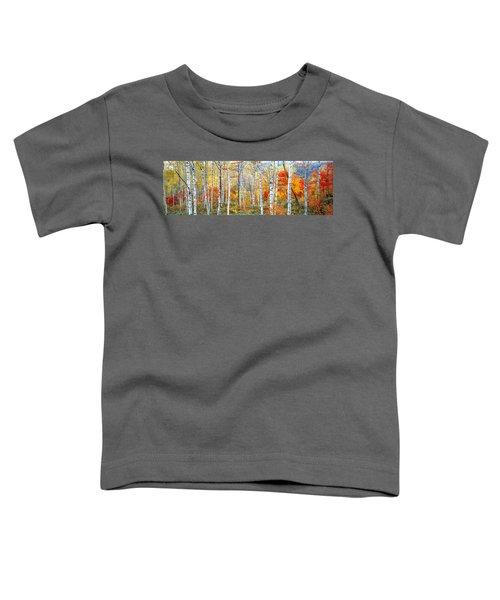 Fall Trees, Shinhodaka, Gifu, Japan Toddler T-Shirt