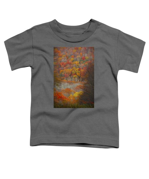 Fall Tunnel Toddler T-Shirt