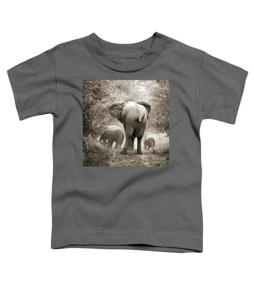 Family Of Elephants Toddler T-Shirt
