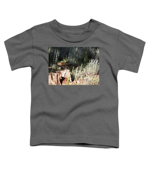 Fawn Front Yard Divide Co Toddler T-Shirt
