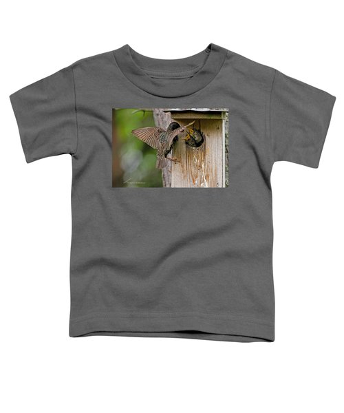 Feeding Starlings Toddler T-Shirt