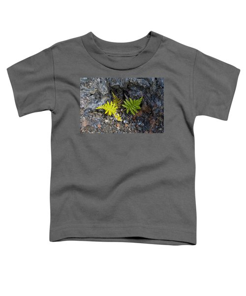 Ferns In Volcanic Rock Toddler T-Shirt