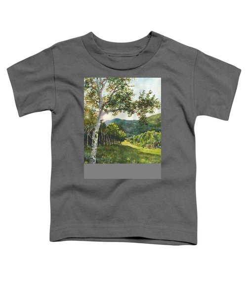 Field Of Light At Caribou Ranch Toddler T-Shirt