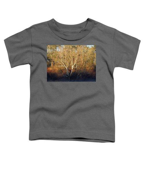 Flint River 16 Toddler T-Shirt