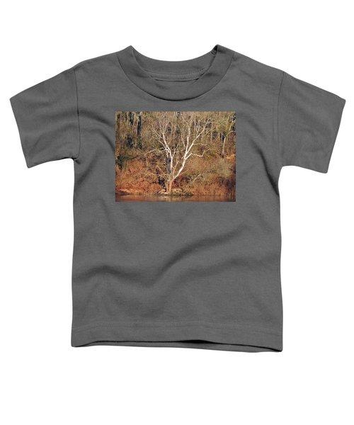 Flint River 25 Toddler T-Shirt