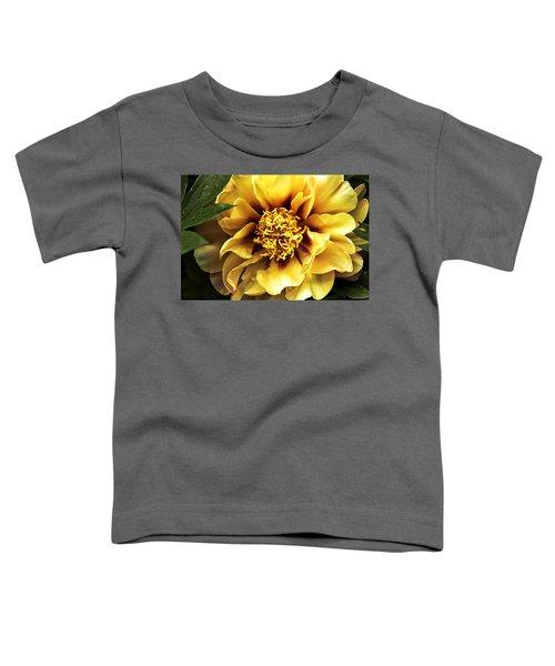 Flirt Toddler T-Shirt