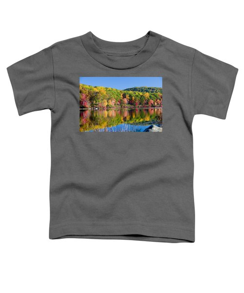 Foilage In The Fall Toddler T-Shirt